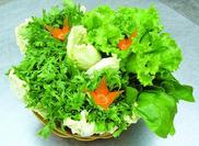 蔬菜的保质期都是多久?