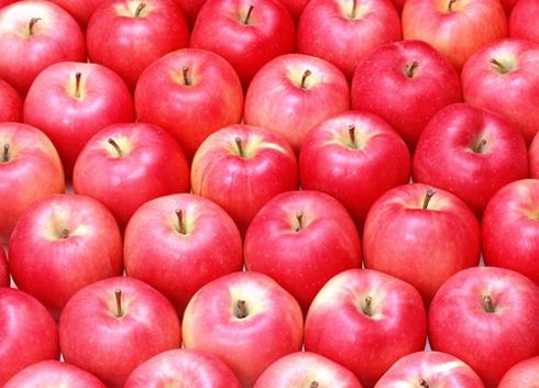 早上空腹吃苹果好吗?哪类人不宜吃苹果